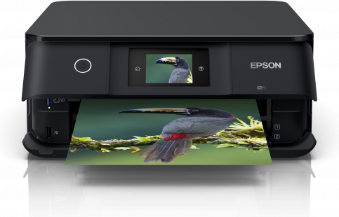 Epson XP-8505 Ink Cartridges